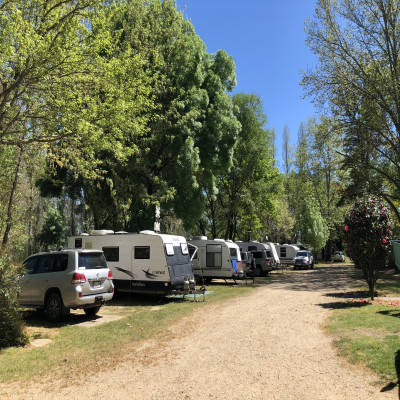 Arderns Caravan Park Myrtleford